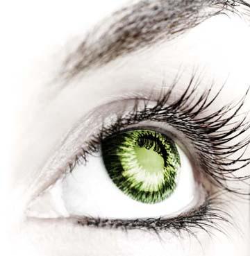 Proteger vista