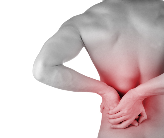 Despídete del dolor de forma natural sin molestias gastrointestinales |  Herbolario Navarro