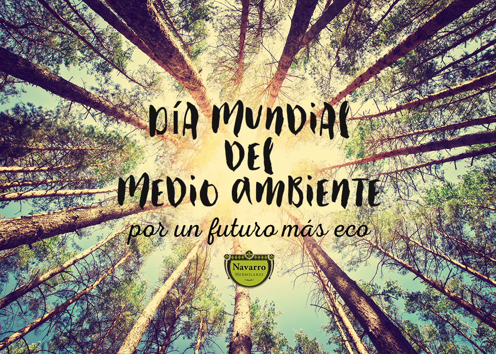 Dia Medio Ambiente 2016