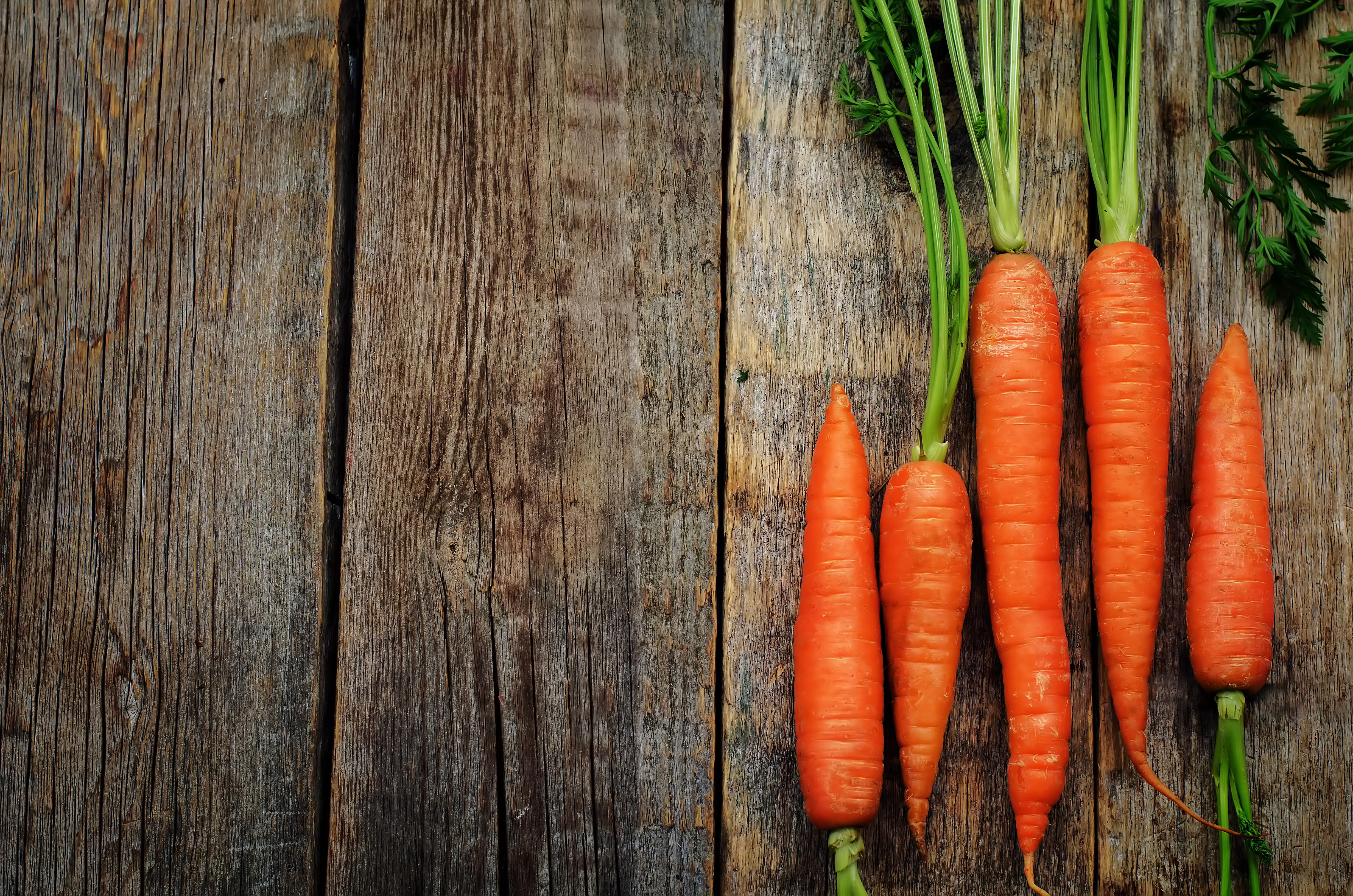 Aceite de zanahoria ecologicos