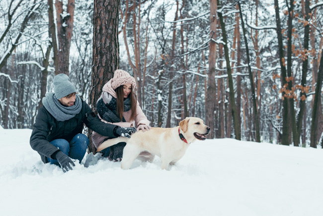 Pareja Feliz en la Nieve