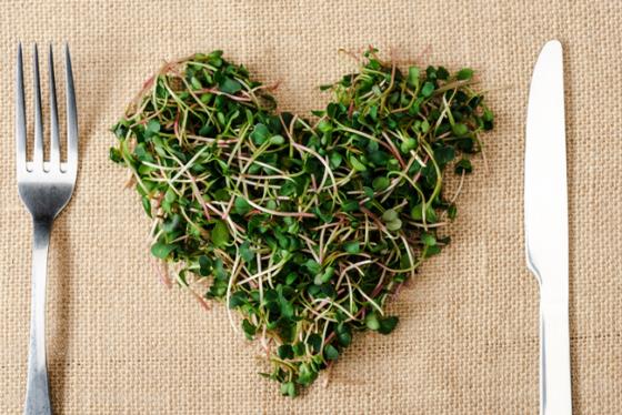 Pruebas estos productos gourmet tan ecológicos y nutritivos para poder llevar una vida sana
